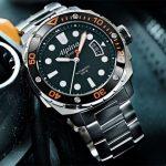 montres alpina